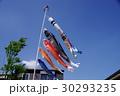 屋根より高く泳ぐ鯉のぼり 30293235