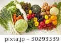 野菜の集合 30293339