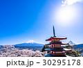 富士山 五重塔 桜の写真 30295178