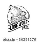 オオカミ 遠吠え ほえるのイラスト 30298276