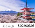 新倉山浅間公園 忠霊塔 富士山の写真 30298686