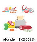 ベクトル 材料 食材のイラスト 30300864