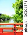 岡崎疏水 30301371