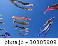青空に泳ぐたくさんの鯉のぼり g 30305909