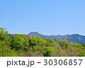 萌え出る山と青空 里山の春 30306857