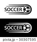 ボール 球 サッカーのイラスト 30307595