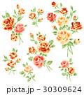 薔薇 花 花柄のイラスト 30309624