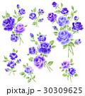 薔薇 花 花柄のイラスト 30309625