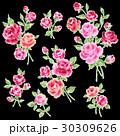 薔薇 花 花柄のイラスト 30309626