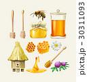 はちみつ 蜂蜜 蜜のイラスト 30311093