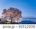 山梨 わに塚の満開の桜 ライトアップの桜 30312036