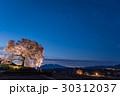 山梨 わに塚の満開の桜 ライトアップの桜 30312037