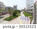 国際大通り(幕張新都心) 30315523