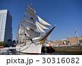 日本丸 総帆展帆 帆船の写真 30316082