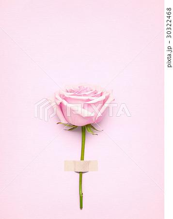 Rose with card.の写真素材 [30322468] - PIXTA