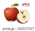 りんご アップル リンゴのイラスト 30327337