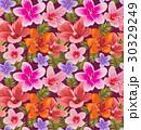 floral 30329249