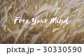 自由 天然 自然の写真 30330590