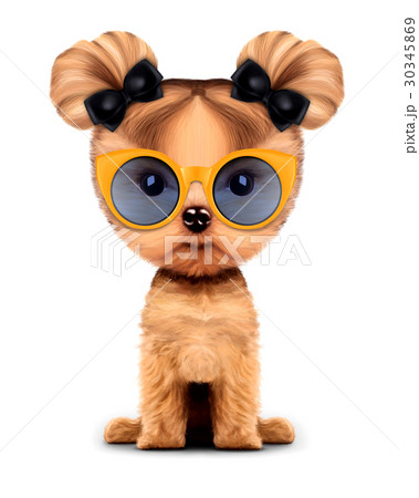 Adorable doggy with sunglasses, isolated on white. 30345869