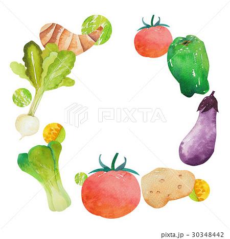 フレーム 野菜のイラスト素材 [30348442] - PIXTA