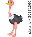 Cute ostrich cartoon 30351360