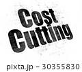 ビジネス 商売 コンセプトのイラスト 30355830