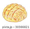 メロンパン 菓子パン パンのイラスト 30366821