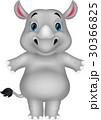Rhino cartoon 30366825