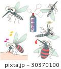 蚊 虫 バリエーションのイラスト 30370100