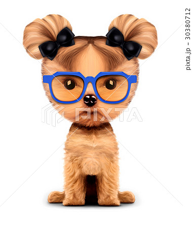 Adorable doggy with sunglasses, isolated on white. 30380712
