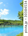 空 池 湖畔の写真 30384534