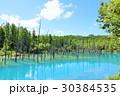 空 池 湖畔の写真 30384535