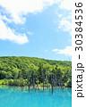 空 池 湖畔の写真 30384536