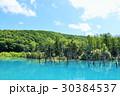 空 池 湖畔の写真 30384537