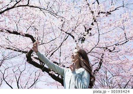 サクラ 桜 自撮りする若い女性 30393424