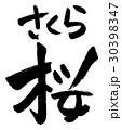 桜 さくら 花のイラスト 30398347