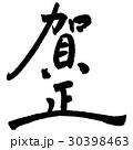 賀正① 30398463