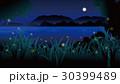 夏夜の蛍 30399489