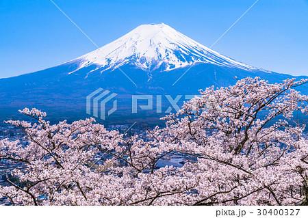 富士山と満開の桜 30400327