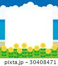 夏 向日葵 海 30408471
