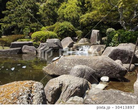 稲毛海浜公園の池に小さい滝と亀さん 30413897