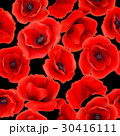 Seamless pattern with red poppy flowers 30416111