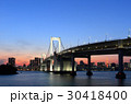 東京港連絡橋 橋 レインボーブリッジの写真 30418400