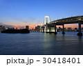 東京港連絡橋 橋 レインボーブリッジの写真 30418401