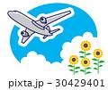 向日葵と飛行機 30429401