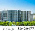 新緑と新築マンション 30429477