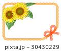 ひまわりカード(オレンジ) 30430229