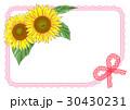 ひまわりカード(ピンク) 30430231