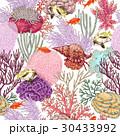 ベクトル 珊瑚 魚のイラスト 30433992