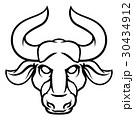 雄牛 おうし座 ホロスコープのイラスト 30434912